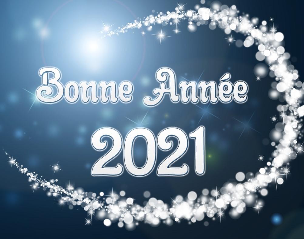 Bonne année 2021 (Auteur : Louise Gagnon)