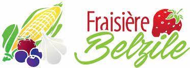 Fraisière Belzile (Auteur : Louise Gagnon)