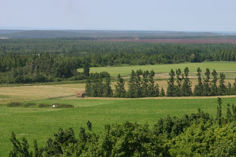 Paysage agricole (Photo : © SADC)